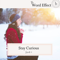 stay curious podcast episode