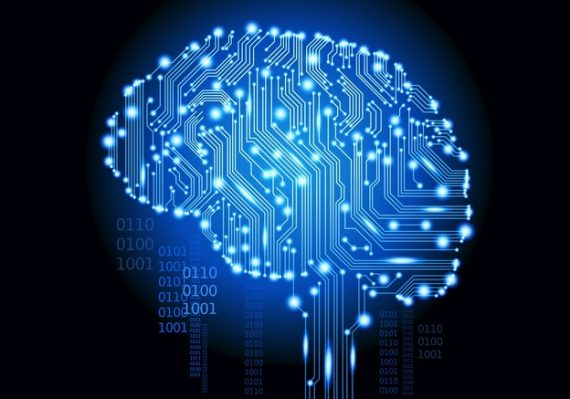 brain basic